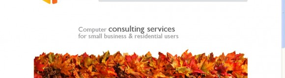 Computer Consultant Web Page